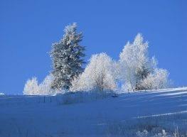 Zima idzie...!!!